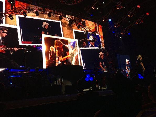 Paisley Screen Close Up 2